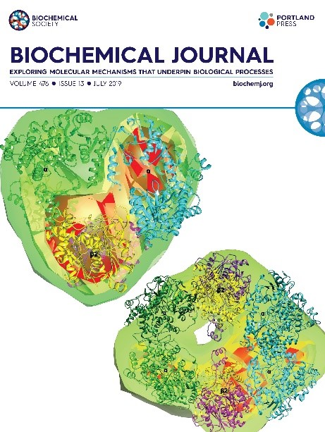 journal of leukocyte biology instructions for authors