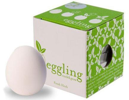 eggling crack and grow instructions